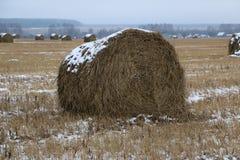 Hay rolls in the snow on a plowed field. Big hay rolls in the snow on a snow-covered empty plowed field Stock Photo