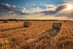 Hay rolls at sunset. Hay rolls during sunset. Dramatic sky, harvest time Stock Photos