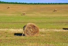 Hay rolls in Tuscany , Italy  Royalty Free Stock Photo
