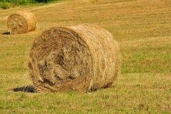 Hay rolls in Tuscany, Italy  Stock Photography