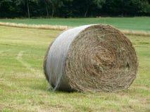 Hay round bales Royalty Free Stock Photos