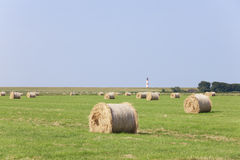 Hay round bales on meadow. On a pasture are dried hay round bales. in the background on a dike lighthouse Royalty Free Stock Photos