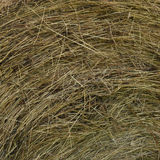 Hay Roundbale Texture Royalty Free Stock Images