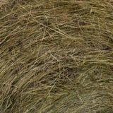 Hay Roundbale Texture Royalty Free Stock Images