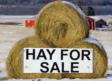 Hay for sale Stock Images