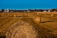 Hay, Sky, Field, Straw Royalty Free Stock Photo