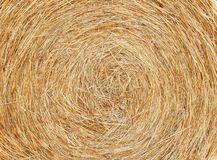 Hay - Spiral Texture Background Royalty Free Stock Photography