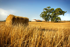 Hay Stack Royalty Free Stock Photography