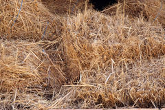 Hay stack. Country Stock Image
