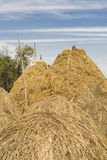 Hay stack. Old fashion way to stack hay in rural Serbia Royalty Free Stock Image