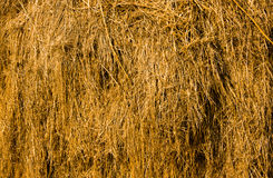 Hay stack Stock Image