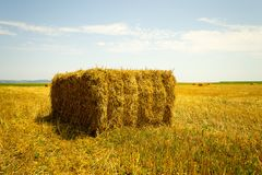 Hay stack on the agriculture field - landscape view. Hay stack on the agriculture field during wheat harvest time stock photo