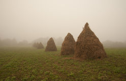 Free Hay Stack And Fog Royalty Free Stock Image - 43613356