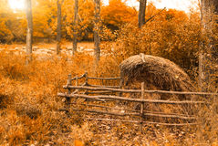 Hay stack. On autumn meadow Royalty Free Stock Photo