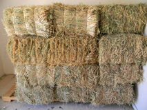 Hay stack. Bales of hay stacked in feed room Stock Photo