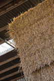 Hay stack in barn Royalty Free Stock Photo