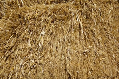 Hay Stack; close-up Royalty Free Stock Images