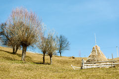 Hay stack in countryside Stock Photography