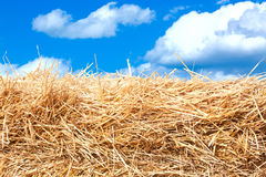 Hay stack detail. Royalty Free Stock Photo