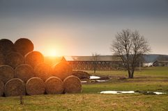 Straw bales texture. Hay stack on the farmland stock photo