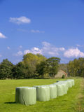 Hay stack field. Royalty Free Stock Photo
