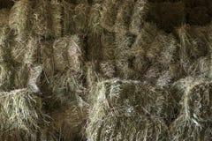 Hay. Stack food autumn farming Royalty Free Stock Image