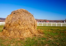 Hay stack on a meadow Stock Images