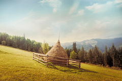 Hay stack on meadow at suuny morning Royalty Free Stock Photo