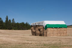 Hay stack in northern Idaho Stock Image
