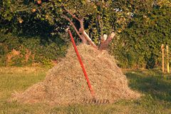 Hay stack and red Rake tool royalty free stock photography