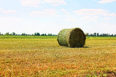 Hay stack on stubble field Royalty Free Stock Photos