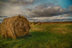 Hay stack in a summer field Stock Image