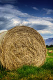Hay stack in a summer field Stock Images