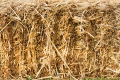 Hay stack wall Royalty Free Stock Image