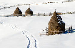 Hay stack in winter Royalty Free Stock Photos