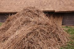 Hay stacked Stock Photography