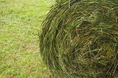 Hay stacks Royalty Free Stock Photography