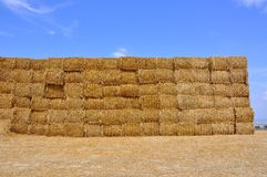 Hay  stacks Stock Photos