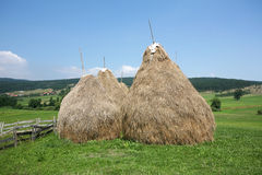 Hay stacks Royalty Free Stock Photos