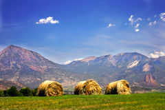 Hay stacks royalty free stock photo