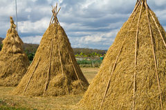 Hay stacks Stock Photography