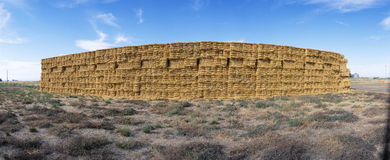 Hay Stacks Stock Image