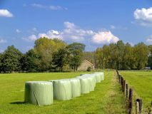 Hay stacks. stock images