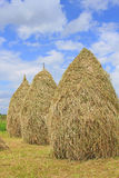 Hay in stacks Stock Photos