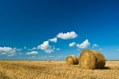 Hay stacks in autumn field Stock Images