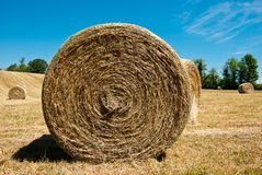 Hay Stacks In Autumn Field Stock Image