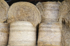 Hay stacks in the barn Stock Image