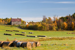 Hay stacks with barn on a fall morning Stock Images