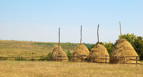 Hay stacks in countryside. Scenic view of hay stacks in countryside Stock Image