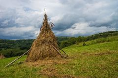Hay stacks in countryside. Summer. Carpathian mountains Stock Image